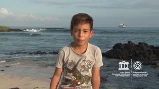 Download Jackob #MyOceanPledge Galápagos Islands World Heritage marine site Video