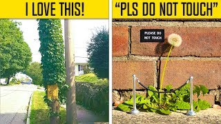 Download Random Acts Of Vandalism That Are Genius Video