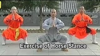Download Shaolin kung fu basic moves 1 Video