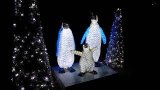 Download Nighttime Christmas Decorations at Busch Gardens Tampa Christmas Town 2017 Video