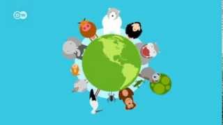 Download How does climate change affect animals? | Global Ideas Video