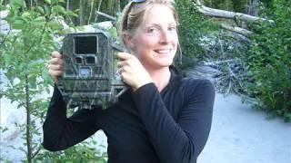 Download Wildlife caught on camera: 2010 remote camera results | Citizen Wildlife Monitoring Program Video