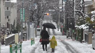 Download Japan Trip 2016 January 18 News today Tokyo has changed to rain from snow !! Video
