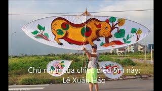 Download Thả diều 5m và bộ sáo 9 tại KĐT Việt Hưng Video