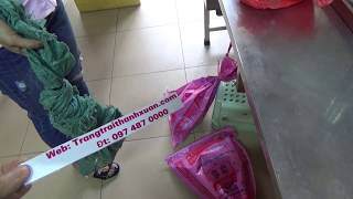 Download Bán tắc kè ngâm rượu tại Hà Nội Video
