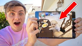 Download MY DOG DOES THIS WHEN I LEAVE?? (HIDDEN CAMERA) Video