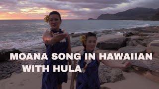 Download MOANA Song in Hawaiian HULA WITH LYRICS ″E Kahiki E″ (How Far I'll go) Video