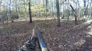 Download deer hunting with dogs(kill shot) Video