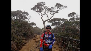 Download Rizzku Everything You Need to Know About Climbing Mount Kinabalu Nov 2017 Video
