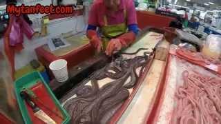Download The Jalgachi Fish Market in Busan, South Korea Video