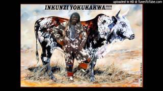 Download Mtshengiseni - Bathinta Mina Nje Video