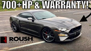 Download $40K + 700HP + WARRANTY! 2018-19 ROUSH MUSTANG GT...too good to be true!?!?! Video