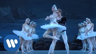 Download Tchaikovsky: Swan Lake - The Kirov Ballet Video