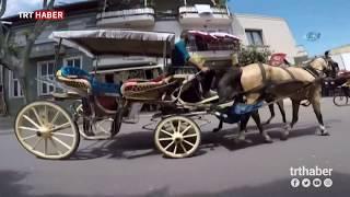 Download Adalar'a elektrikli fayton geliyor Video