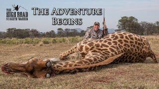 Download Wildebeest & Rogue Giraffe Hunt   ″The Adventure Begins″ Video