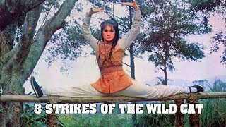 Download Wu Tang Collection - Eight Strikes Of The Wild Cat Video