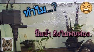 Download ปั๊มน้ำไม่ยอมพ่นฟอง Video