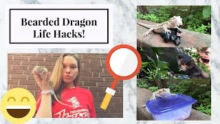 Download 10 Bearded Dragon Life Hacks/Tips! Video