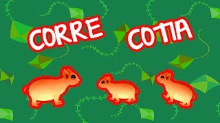 Download CORRE COTIA | BEBÊ MAIS NÚMEROS Video