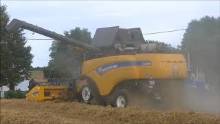 Download New Holland CX 8.85 SmartTrax - Wheat harvest 2017 Video