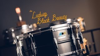 Download Snare Spotlight: Ludwig Black Beauty Video