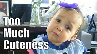 Download Too Much Cuteness! - April 17, 2015 - ItsJudysLife Vlogs Video