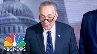 Download Chuck Schumer Demands Tom Price, Cabinet Nominee, Be Investigated For Insider Trading | NBC News Video