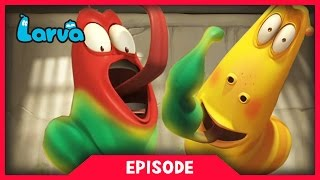 Download LARVA - SUPER STRENGTH | 2017 Cartoon Movie | Videos For Kids | 라바 | LARVA Official Video