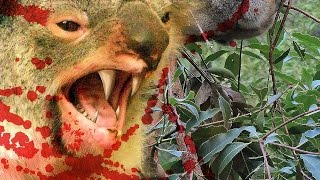 Download 10 FAMOUS AUSTRALIAN CRYPTIDS Video