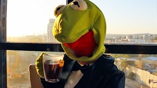 Download Kermit Memes In Real Life Video
