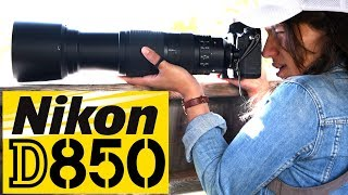 Download NIkon D850: Best Wildlife Camera EVER? Video