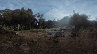 Download JURASSIC PARK IN VR 3D 360 | JURASSIC WORLD: BLUE CHAPTER 1 Video