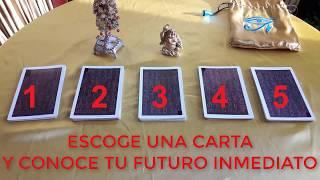 Download ESCOGE UNA CARTA Y CONOCE TU FUTURO INMEDIATO TAROT GRATIS Video