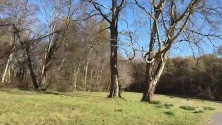 Download Poverty Point Earthworks Mounds Video