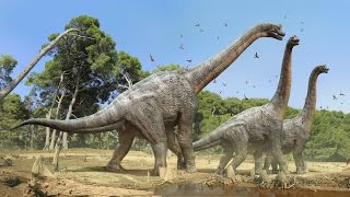 Download BiOLOGY (3rd Video) Planet of Life (When Dinosaurs Ruled) Video
