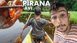 Download AMAZONLARDA PİRANA AVI (Bu suya düşmek istemezsiniz) Video