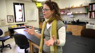 Download UW Biocore - Student Experience Video