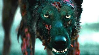 Download CABIN FEVER Official Trailer (2016) Eli Roth Horror Remake Movie HD Video