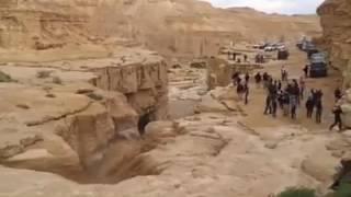 Download Succede solo una volta l'anno nel deserto! Incredibile! Video