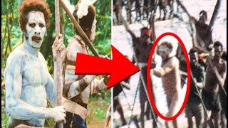 Download 5 Mysterious Jungle Discoveries That Cannot Be Explained Video