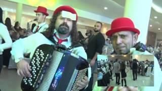 Download Mladenovac svadba kod gazda Kire Video
