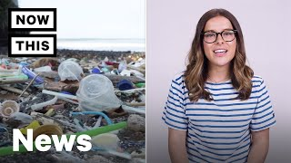 Download Plastic Pollution is Causing Problems in Our Oceans | NowThis Video