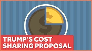 Download Donald Trump and Healthcare Cost Sharing Video