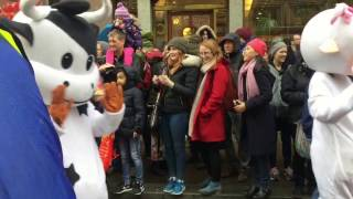 Download Chinese New Year Parade 2017 Video