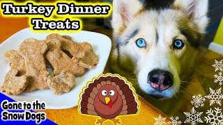 Download Thanksgiving Dinner for Dogs | DIY Dog Treats | Snow Dogs Snacks 88 Video