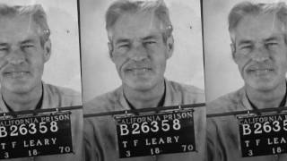 Download Dying to Know: Ram Dass & Timothy Leary Video