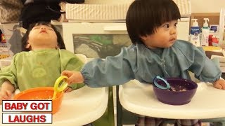Download Baby Brothers and Sisters 2 | Cute Babies Compilation Video