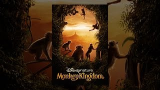 Download Disneynature Monkey Kingdom Video