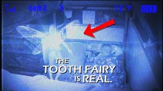 Download James Catches the Tooth Fairy (on Camera) Video