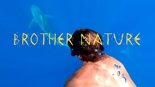 Download Brother Nature 4: Sharks Are Friends! Video